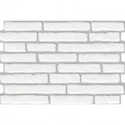 Mattonella Caravista Bianco 40x60